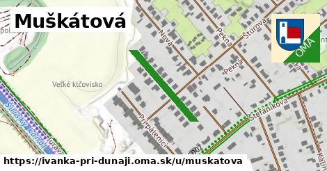 ilustrácia k Muškátová, Ivanka pri Dunaji - 215m
