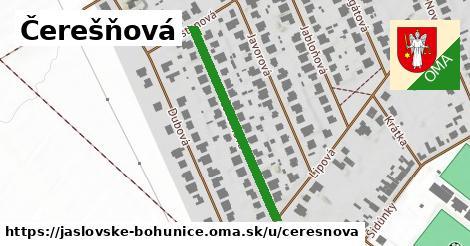 ilustrácia k Čerešňová, Jaslovské Bohunice - 337m