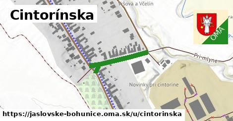 ilustrácia k Cintorínska, Jaslovské Bohunice - 220m
