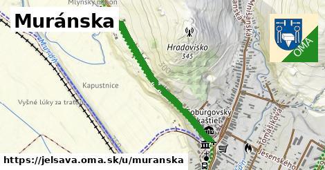 ilustrácia k Muráňska, Jelšava - 0,70km
