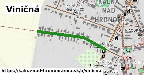 ilustračný obrázok k Viničná, Kalná nad Hronom