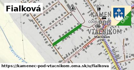 ilustrácia k Fialková, Kamenec pod Vtáčnikom - 193m