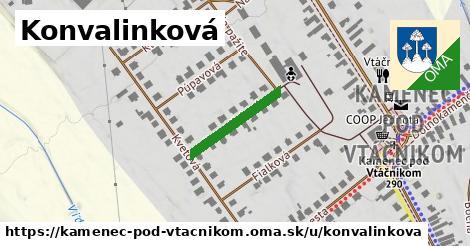 ilustračný obrázok k Konvalinková, Kamenec pod Vtáčnikom