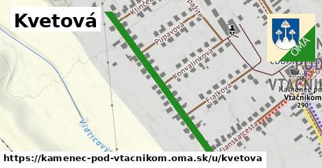 ilustrácia k Kvetová, Kamenec pod Vtáčnikom - 413m
