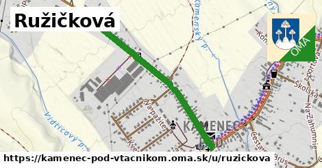 ilustrácia k Ružičková, Kamenec pod Vtáčnikom - 0,78km