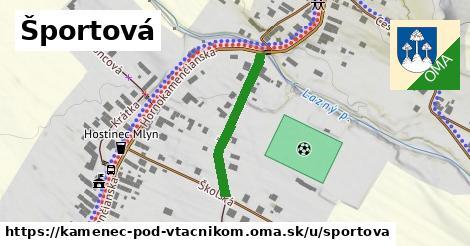 ilustračný obrázok k Športová, Kamenec pod Vtáčnikom
