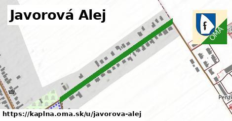 ilustrácia k Javorová Alej, Kaplna - 433m