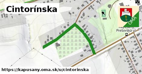 ilustrácia k Cintorínska, Kapušany - 394m