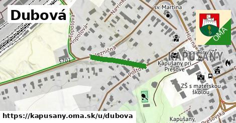 ilustrácia k Dubová, Kapušany - 175m