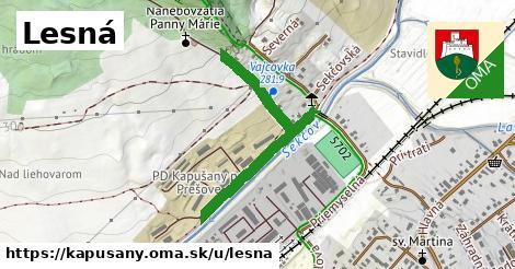 ilustrácia k Lesná, Kapušany - 0,81km