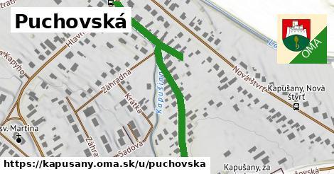 ilustrácia k Púchovská, Kapušany - 563m