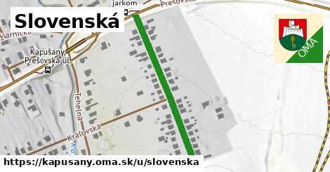 ilustrácia k Slovenská, Kapušany - 347m