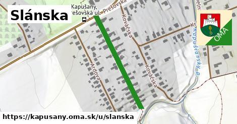 ilustrácia k Slánska, Kapušany - 321m