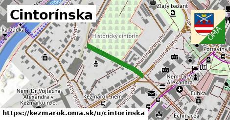 ilustrácia k Cintorínska, Kežmarok - 202m
