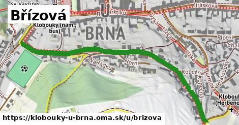 ilustrácia k Břízová, Klobouky u Brna - 693m