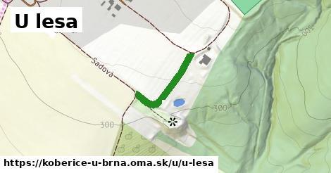 ilustrácia k U lesa, Kobeřice u Brna - 189m