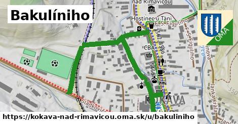 ilustrácia k Bakulíniho, Kokava nad Rimavicou - 687m