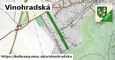 ilustrácia k Vinohradská, Kolíňany - 566m