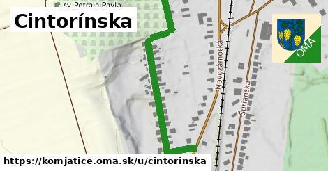 ilustrácia k Cintorínska, Komjatice - 568m