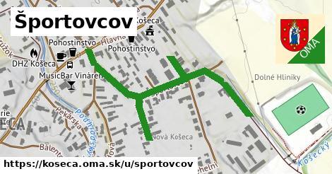 ilustrácia k Športovcov, Košeca - 622m