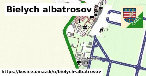 ilustrácia k Bielych albatrosov, Košice - 0,87km