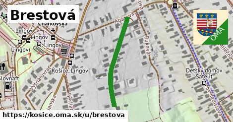 ilustrácia k Brestová, Košice - 254m