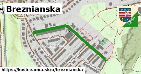 ilustračný obrázok k Breznianska, Košice