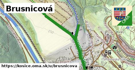 ilustrácia k Brusnicová, Košice - 1,03km