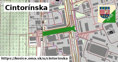 ilustračný obrázok k Cintorínska, Košice