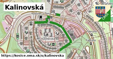 ilustračný obrázok k Kalinovská, Košice