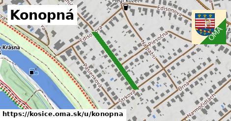 ilustrácia k Konopná, Košice - 227m