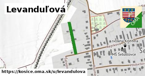 ilustrácia k Levanduľová, Košice - 168m