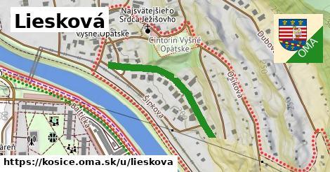ilustrácia k Liesková, Košice - 311m