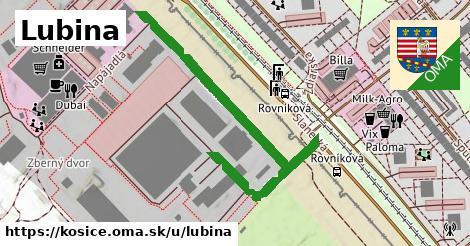ilustračný obrázok k Lubina, Košice