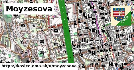 ilustračný obrázok k Moyzesova, Košice