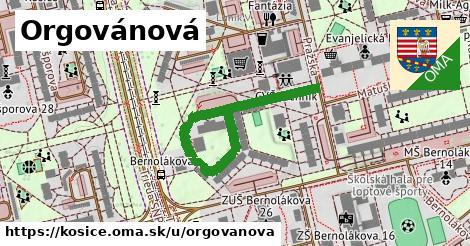 ilustrácia k Orgovánová, Košice - 428m