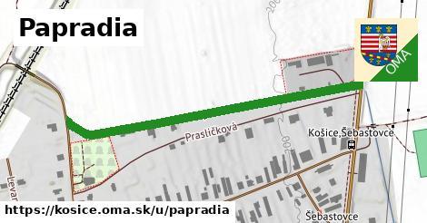 ilustrácia k Papradia, Košice - 532m