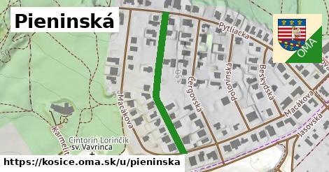 ilustrácia k Pieninská, Košice - 333m