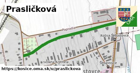 ilustrácia k Prasličková, Košice - 537m