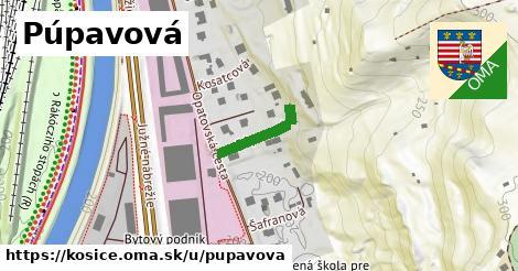 ilustrácia k Púpavová, Košice - 149m
