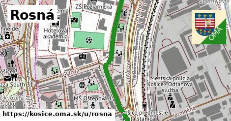 ilustrácia k Rosná, Košice - 401m