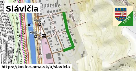 ilustrácia k Slávičia, Košice - 257m