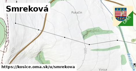 ilustračný obrázok k Smreková, Košice