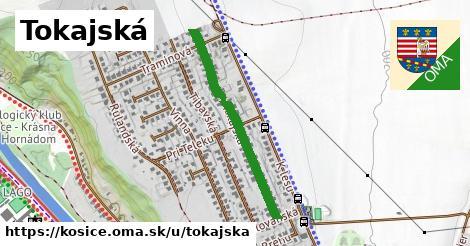 ilustrácia k Tokajská, Košice - 655m