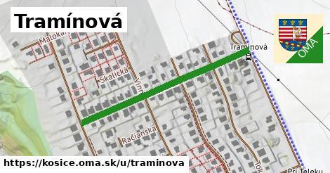 ilustračný obrázok k Tramínová, Košice