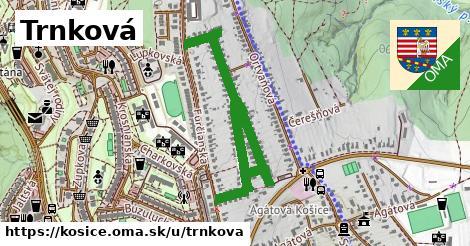ilustrácia k Trnková, Košice - 1,08km