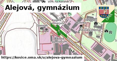 Alejová, gymnázium, Košice
