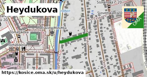 ilustrácia k Heydukova, Košice - 146m