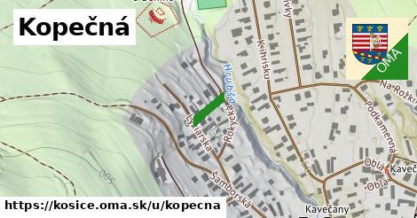 ilustrácia k Kopečná, Košice - 69m
