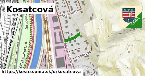 ilustrácia k Kosatcová, Košice - 89m